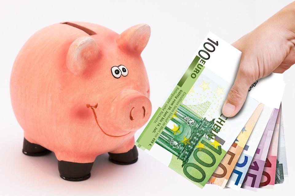 prasátko a eura
